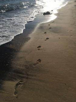 sandy-footsteps